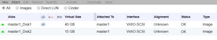 ocp_disks_master